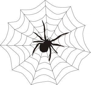 Spinne als Scherzgeschenk